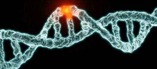 genetik_mutasyon_obeziteye_yol_aciyor_h13732